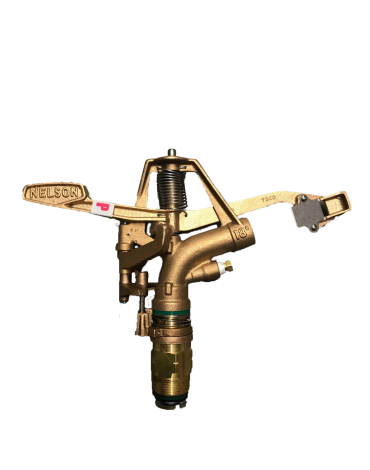 canon-nelson